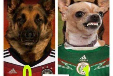 Los memes que nos dejó el triunfo de México contra Alemania