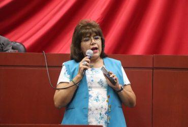 Llama diputada Blanca Nieves Sánchez a dar seguridad a escuelas para evitar robos