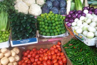 Suben precios de vegetales tras ola de frío en la zona sur
