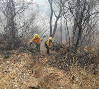 Tan solo en dos días se han combatido 12 incendios forestales en Morelos