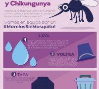 Llaman a no bajar la guardia para evitar criaderos del mosquito transmisor de dengue, chikungunya y zika.