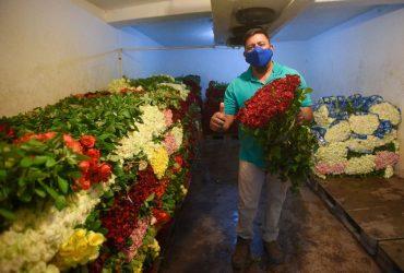 Miles de docenas de rosas serán vendidas este 10 de mayo