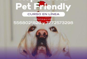 "Impartirá ICATMOR curso ""Pet Friendly"" de repostería"