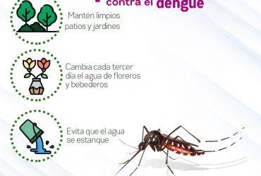 Pide SSM reforzar medidas a embarazadas para evitar dengue, zika y chikungunya, ya son 281 casos registrados de esta enfermedad